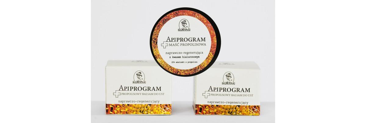 Apiprogram